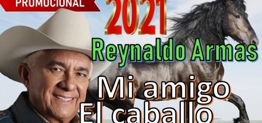 mi amigo el caballo reynaldo armas